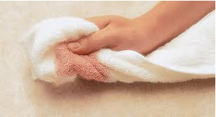 Carpet protector - blotting wet spills