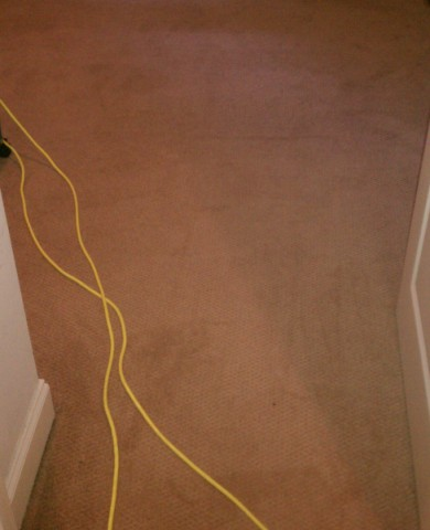 Atlanta Carpet Repair - AFTER Restretching